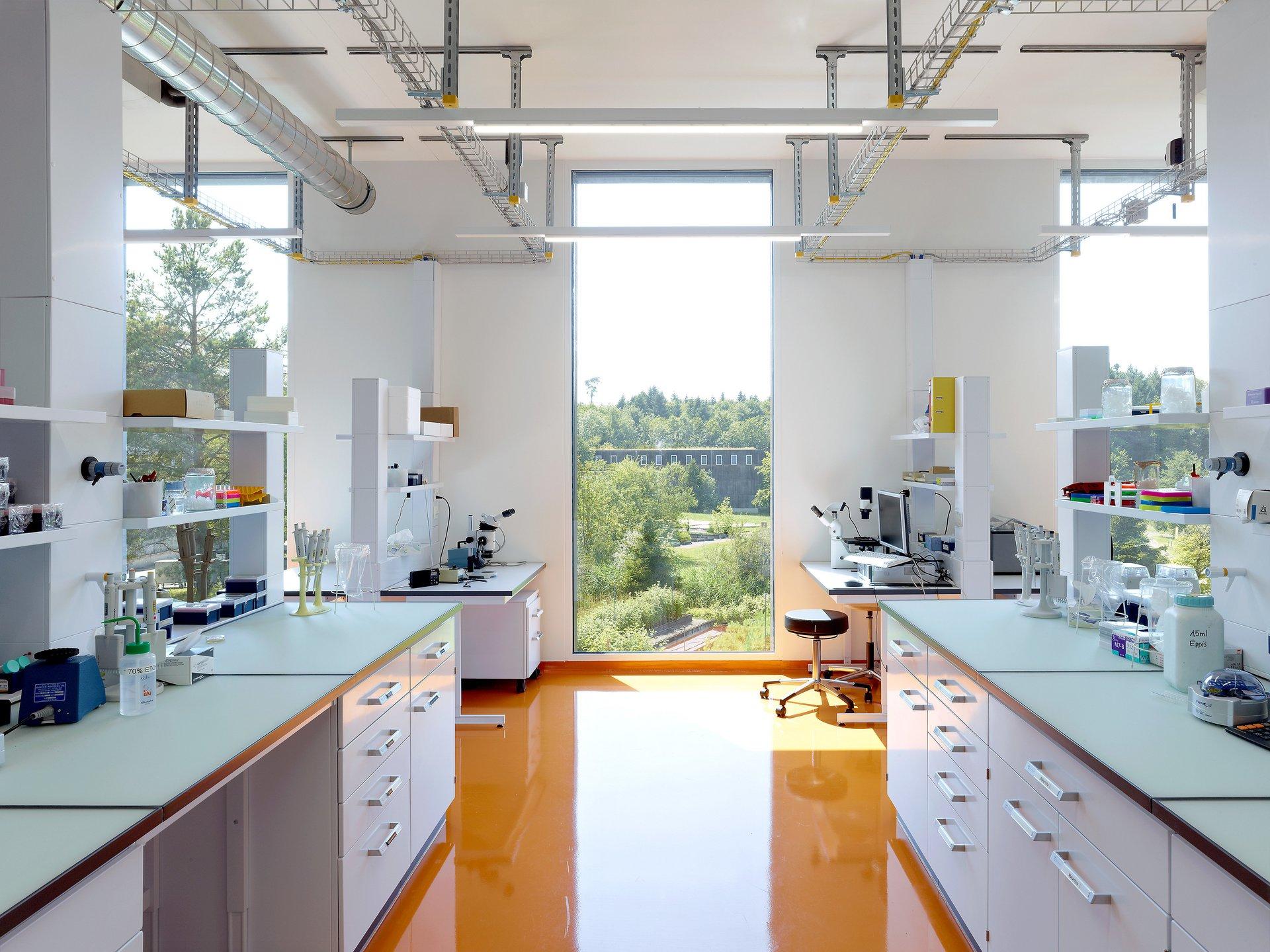 Lichtdurchflutetes Labor mit orangem Boden