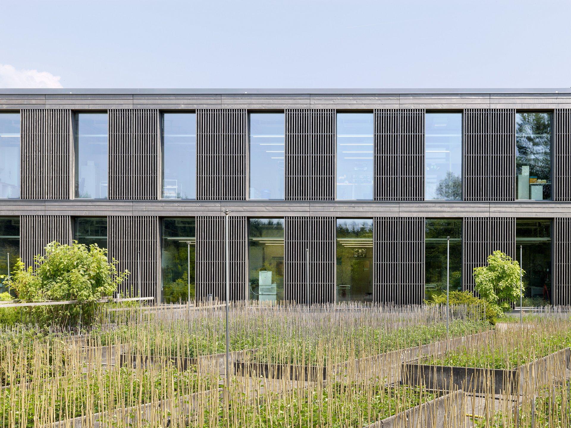 Gebäudefassade mit vertikalen Holzlamellen, vorvergraut