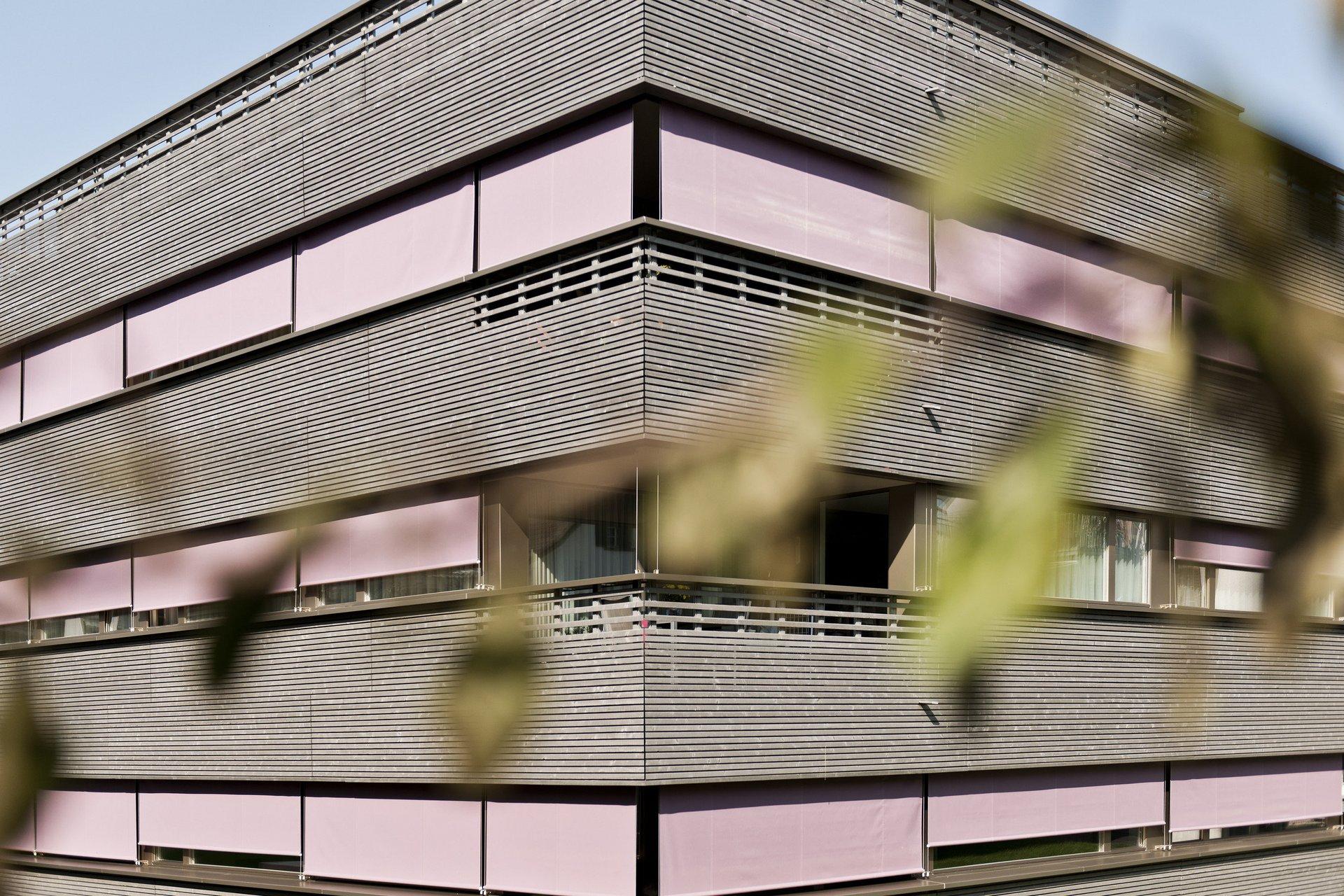 Eckansicht Gebäude aus Holz-Beton-Verbundsystem mit rosa Sichtschutz und Holzfassade