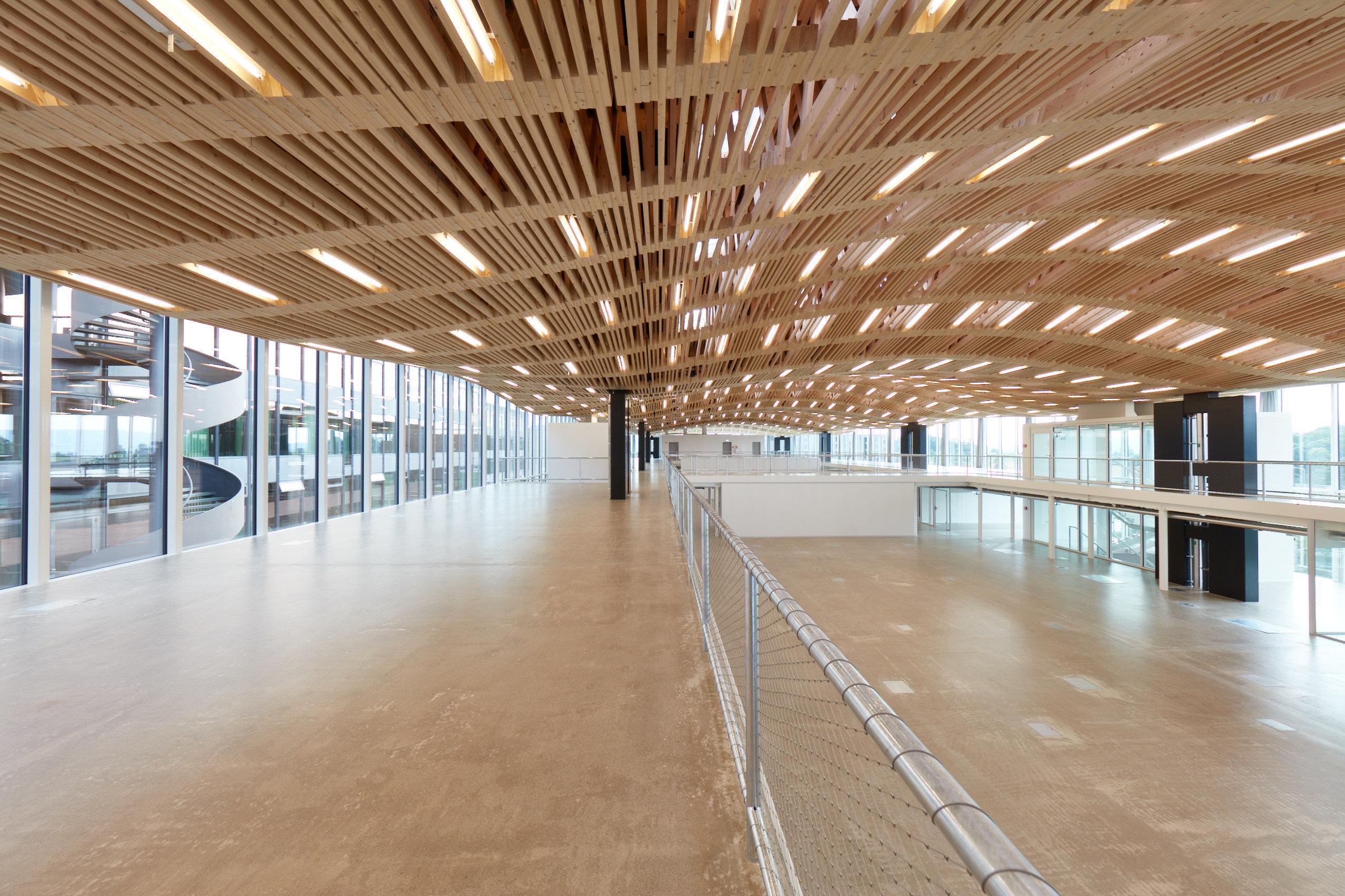 gewölbtes Holzdach aus Fachwerkträgern mit integrierter Beleuchtung